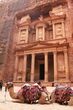 The Treasury at Petra and camels