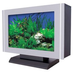Tabletop Aquarium 13x17 now featured on Fab.COM $99
