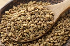 Fenugreek seeds are beneficial for your hair. You can fight hair fall, damaged hair, dandruff and many more with fenugreek seeds. Read here to know the benefits of fenugreek seeds and methods to use fenugreek for hair. Aloe Vera Gel For Hair Growth, Aloe Vera For Hair, Fenugreek For Hair, Fenugreek Benefits, Strong Hair, Food Lists, Fall Hair, Ayurveda, Dog Food Recipes