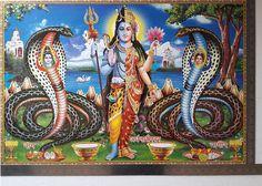 "20""x28"" Big Poster Shiva Parvati Ardh-Narishwar Snakes Naag Shiv Ji, Mix Photo, Vintage India, Hindu Deities, New Years Sales, Hanuman, Snakes, Cow, Statue"