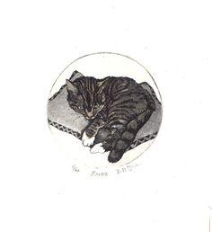 Cat Original Etching Bartie