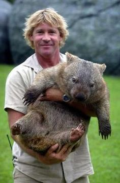 Steve Irwin and a Wombat love him and love these creatures! Bucket list: australia, meet a wombat:) Steve Irwin, Terri Irwin, Mon Zoo, Animals Beautiful, Cute Animals, Fluffy Animals, Irwin Family, Crocodile Hunter, The Wombats