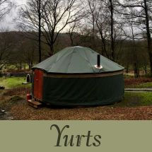 Grizedale Camp Site | Lake District Camping | Bowkerstead Farm Satterthwaite - HOME Lake District Camping, Family Holiday, Summer Travel, Campsite, Outdoor Gear, Camping