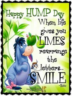 Added with key lime or lime flavored items. Funny Wednesday Quotes, Wednesday Morning Quotes, Hump Day Quotes, Hump Day Humor, Happy Morning Quotes, Wednesday Humor, Wednesday Motivation, Friday Humor, Good Night Quotes