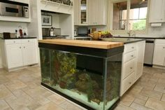 Have you ever thought about placing an aquarium in your kitchen? Actually, the feature of an aquarium in a kitchen will make it looks outstanding, suitable for you who want to make your kitchen as the center of attention in your house. Home Aquarium, Aquarium Design, Aquarium Fish Tank, Fish Aquariums, Aquarium Ideas, Cool Fish Tanks, Saltwater Fish Tanks, Fish Tank Design, Architecture