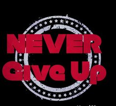 Never Give up on anything