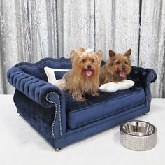Gigi Dog Bed by Haute House. If our dog was small enough I would buy this! But it would need an actual full size sofa!