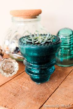 Antique Glass Insulator Succulent Planter - another DIY project idea. These glass insulator can be converted into light pendant. I remember seeing the pin of glass insulator DIY somewhere a year ago. Succulent Planter Diy, Flower Planters, Garden Planters, Flower Pots, Succulents, Diy Planters, Planter Boxes, Container Gardening, Gardening Tips