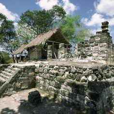 Visit the Mayan ruins at San Gervasio in Cozumel.