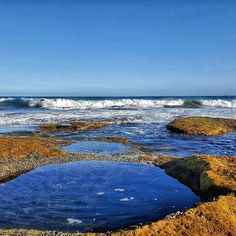 Spectacular Point Roadknight at low tide. Exploring the rock pools with Franca. #pointroadknight #ocean #sea #anglesea #surf by salt_fitness http://ift.tt/1KosRIg