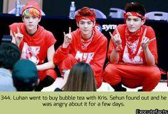 exo cute facts - Sehun