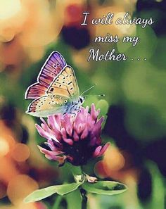 Grieving for mom Happy Mother's Day, My Mother I miss💔 I Miss My Mom, Love You Mom, I Miss You, Mom And Dad, Mothers Day Quotes, Mom Quotes, Mothers Love, Qoutes, Faith Quotes