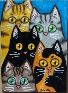 ACEO Miniature 5 Cats Staring Black Grey Ginger Tabby Calico Folk Art by STRIKE