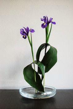 Blog sobre plantas, flores, velas y decoración floral.