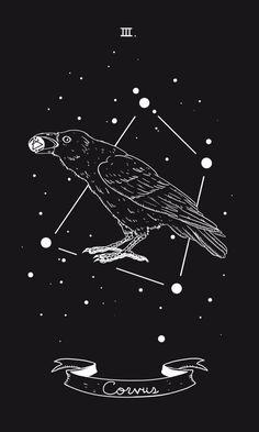 Crow - watcher, omen, warning, guide | Wingy's Art