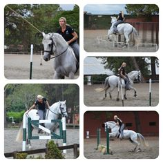 Working Equitation for the first time with Marijke de Jong. Check out the video on my website!
