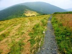 Appalachian Trail on Round Bald Hiking at Roan Mountain, North Carolina at the Tennessee border