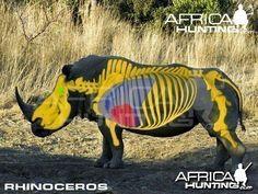 Grands gibiers africains - Le blog de Alex.bowhunter Africa Hunting, Skeletal System, Rhinoceros, Impala, Archery, Animal Kingdom, The Help, Beast, Lion Sculpture