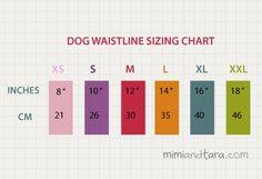 Perro de tamaño carta cintura