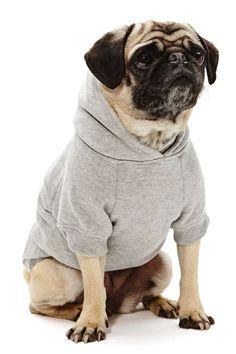 Sup Dog Hoodie