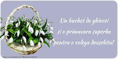 Un buchet de ghiocei Mai, Flowers, Plants, 8 Martie, Medicine, Romance, Weight Loss, Life, Ideas
