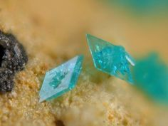 Nissonite. Boss Mine, Goodsprings District, Spring Mts, Clark Co., Nevada, USA FOV=1.5 mm Photo © Jean-Marc Johannet