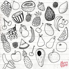 Fruit Clipart 31 Hand Drawn Fruit Cliparts Fruit Logo Art
