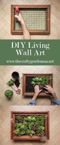 Learn how to make your own living wall art vertical garden. Click through to see the step by step tutorial Learn how to make your own living wall art vertical garden. Click through to see the step by step tutorial Garden Wall Designs, Garden Wall Art, Diy Garden, Garden Care, Fruit Garden, Balcony Garden, Garden Walls, Wall Garden Indoor, Indoor Plant Wall