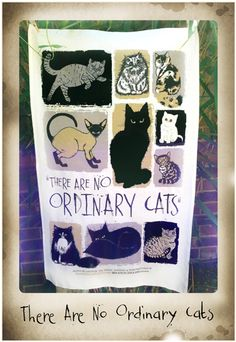 There Are No Ordinary Cats - tea towel