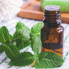 Peppermint oil benefits range from gut health to headache relief to skin health. Learn its uses and DIY recipes to take advantage of this essential oil. Peppermint Essential Oil Benefits, Peppermint Oil Uses, Best Essential Oils, Pure Essential, Gut Health, Health Tips, Health Benefits, Health Resources, Natural Remedies