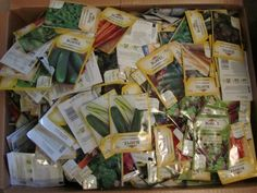 Seedy Saturday and Seedy Sunday 3 Pm, February 9, Perth, Diversity, Join, Sunday, Gift Wrapping, Canada, Domingo