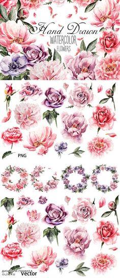 Beautiful watercolor flowers - 633484