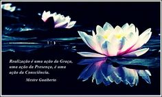 """""""Realization is an action of Grace, an action of Presence, an action of Consciousness."""" /////  """"Realización es una acción de la Gracia, una acción de la Presencia, una acción de la Conciencia."""" /// Satsang Mestre Gualberto"""