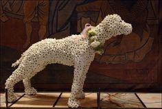 dog topiary via blog.prestonbailey.com