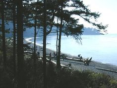 Deception Pass State Park-Whidbey Island Washington. Highly recommended for anyone. Tons to do, gorgeous and can even be a day trip.