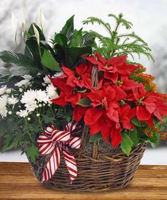Sarasota Same Day Flower Delivery By Beneva Flowers Voted Best Florist For 20 Years