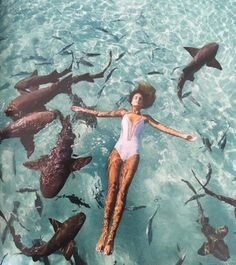 ya know.. Just causally swimming with sharks. ✶❀❅✰❅❀✶LainaLoveGod