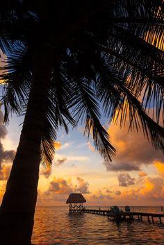 Hut and Coconut, Caye Caulker Belize