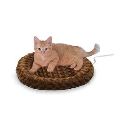 A heated cat bed helps cats of all ages soothe their sore muscles and release the stress of the day. Bedsforcats.com offers a variety of heated cat beds. Shop now!