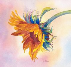 sunflower, watercolor by Pat Yager
