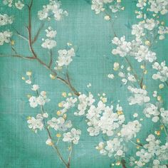 """Star Creations """"White Cherry Blossoms II"""" by Danhui Nai Painting Print on Wrapped Canvas Size:"""