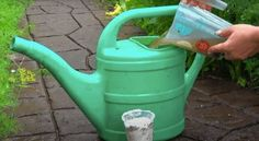 Watering Can, Canning, Home Canning, Conservation