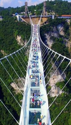 It contains the world´s most exciting tickets, tours and activities, anywhere in the world! Glass Bridge, Zhangjiajie, Forest Park, Forest City, Fairy Queen, Pedestrian Bridge, National Forest, Interior Design Living Room, Mother Nature