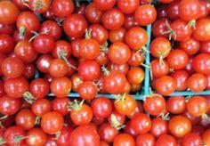 Alabama Seasonal Fruits and Vegetables Guide