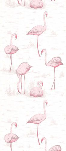 Cole Son - Contemporary Restyled - Flamingos Wallpaper - Rockett St George