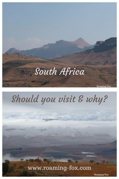 How to travel safely in South Africa. #safety #travel #SouthAfrica #safari #surfing #swimming #hiking #roadtrips #visitsouthafrica #destination #driving #transport #wildlife #nature #hijacking #protestactions Fox Facts, Visit South Africa, Wildlife Nature, Photo Essay, Memoirs, Den, Travel Inspiration, Safari, Travel Tips