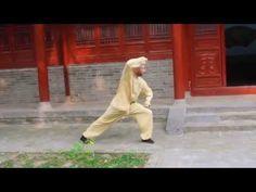 Shi Xing Long - Xin Yi Chui Quan - 心意锤拳 - YouTube