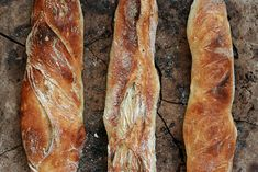 12 stupňů k pekařskému osvícení s Peterem Reinhartem   Cuketka