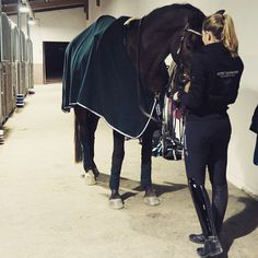 """715 curtidas, 6 comentários - Team Schokominza (@domi_schokominza) no Instagram: """"Gestern Abend hab ich die liebe Nici @berlinizzi und ihre süße Minnie besucht 😍 Bin verliebt in…"""""""