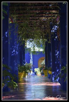 Ambiance Marocaine - VirusPhoto